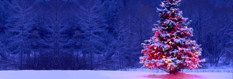 Новый год в Карпатах